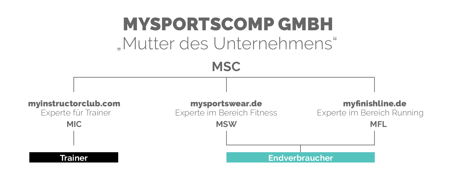Organigramm MYSPORTSCOMP